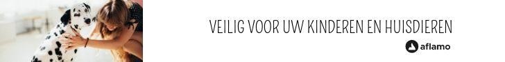 Elektrische inbouw sfeerhaarden, wandhaarden en schouwen in Antwerpen